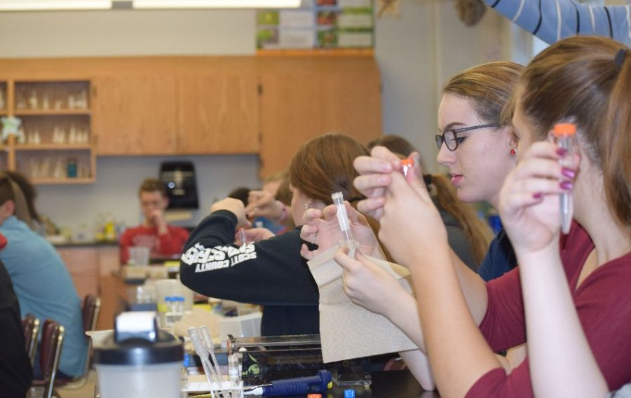 Biology students at West are testing their DNA.