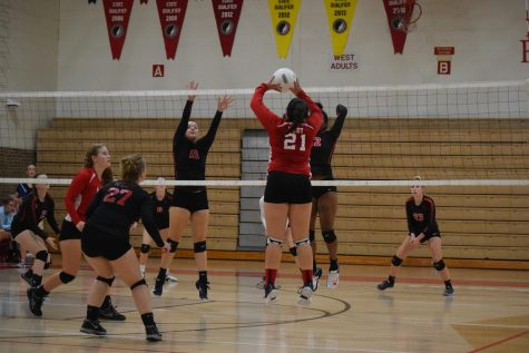 JV: Junior Baylee Kronfeld setting the ball.