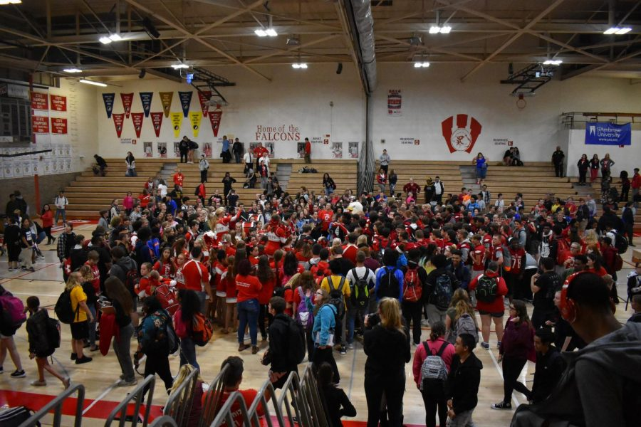 """Everyone is a falcon, we need to build that community, and the school spirit, this pep assembly will do that,"" social studies teacher Christine Coyne-Logan said."