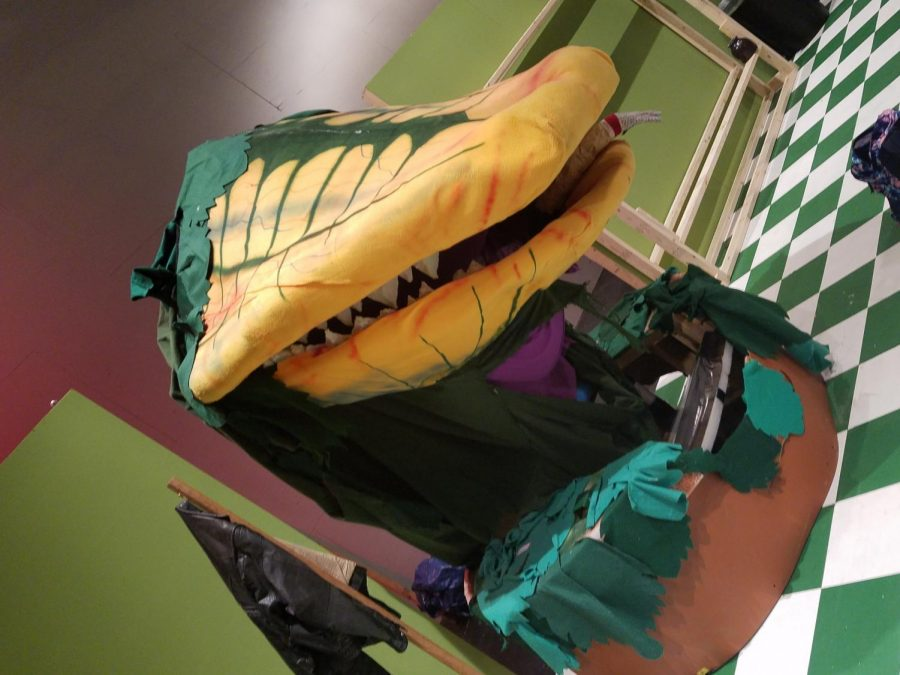 Audrey II has four different pods throughout the show, with pod four being depicted above. Pod 4 has to be controlled by four people. The pods were made for a Music Guild production, and have been gifted to falcon theater for their production.